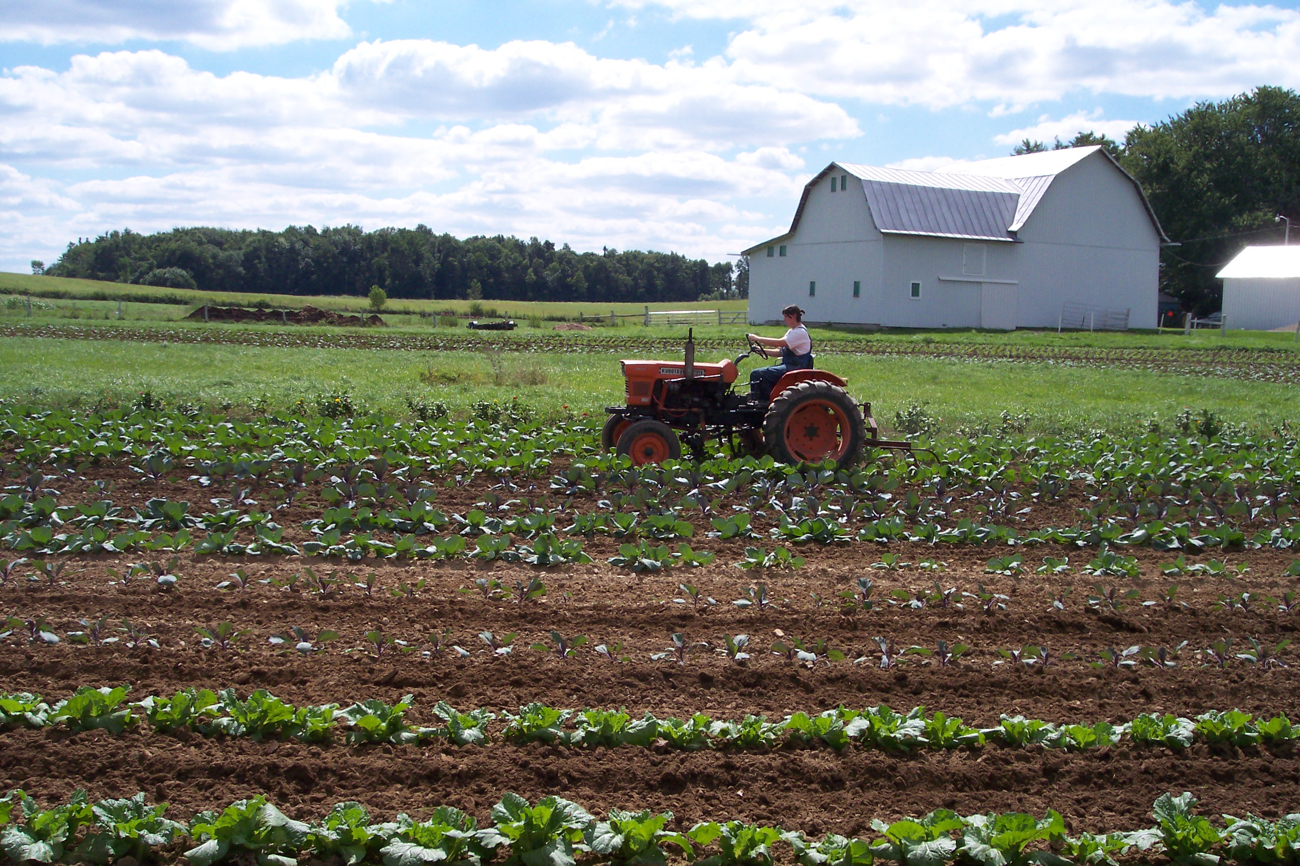Sippel Family Farm  Sippel Family F...